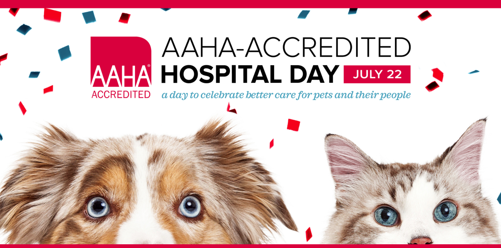 AAHA-Accredited Hospital Day: A Day to Celebrate Better Care for Pets and Their People