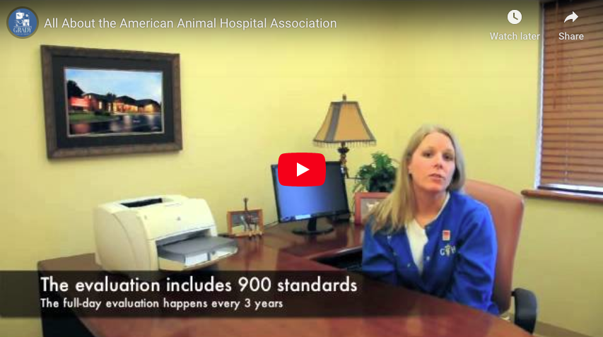 All About the American Animal Hospital Association