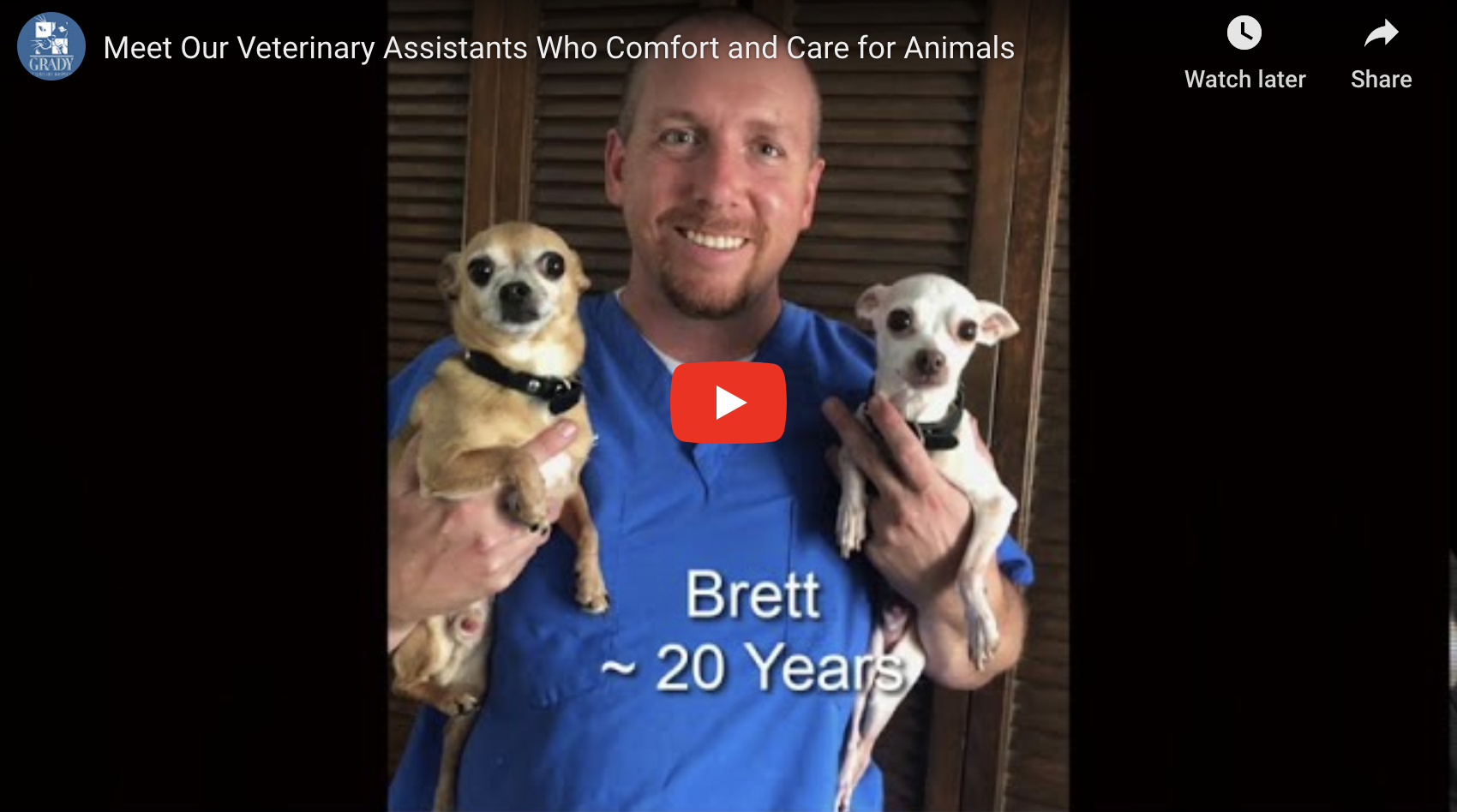 Meet Our Veterinary Assistants Who Comfort and Care for Animals