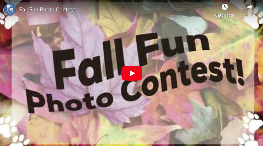 Fall Fun Photo Contest