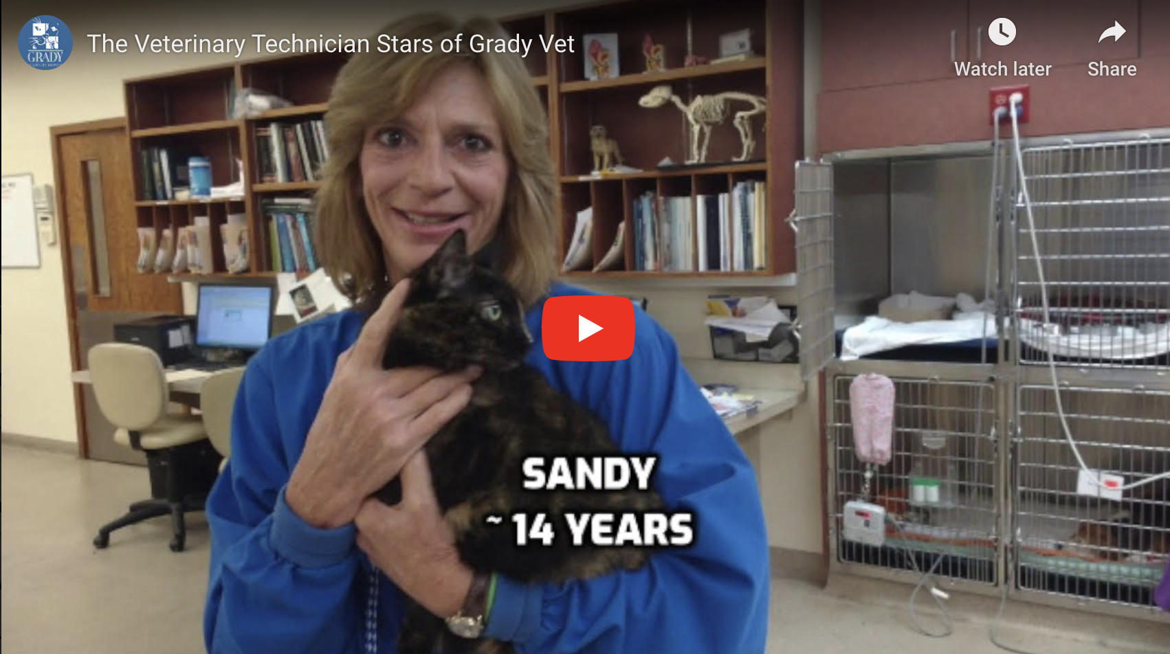 The Veterinary Technician Stars of Grady Vet