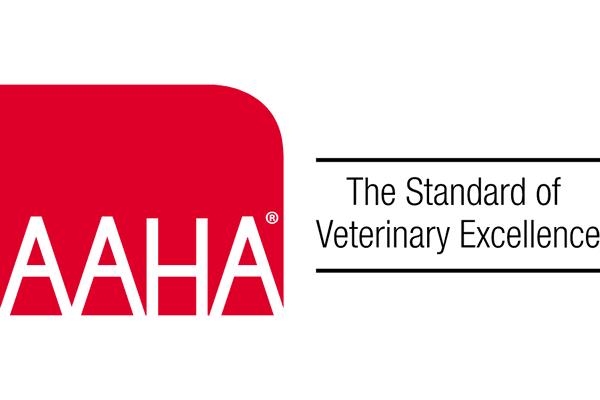 Grady Vet Achieves New AAHA Accreditation Standard for Internal Medicine Referrals