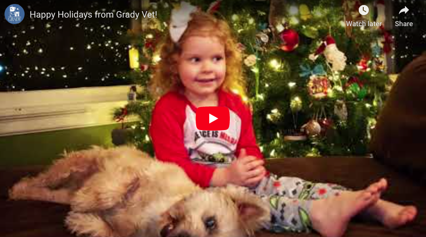 Happy Holidays from Grady Vet!