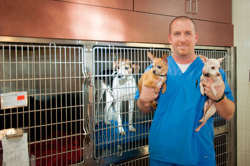 Meet Our Veterinary Assistants